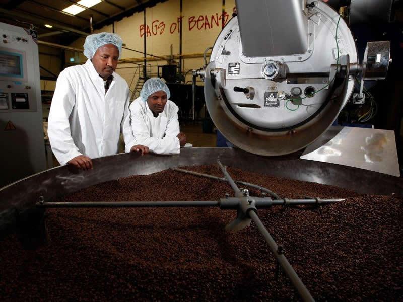 Oromo Coffee Growers
