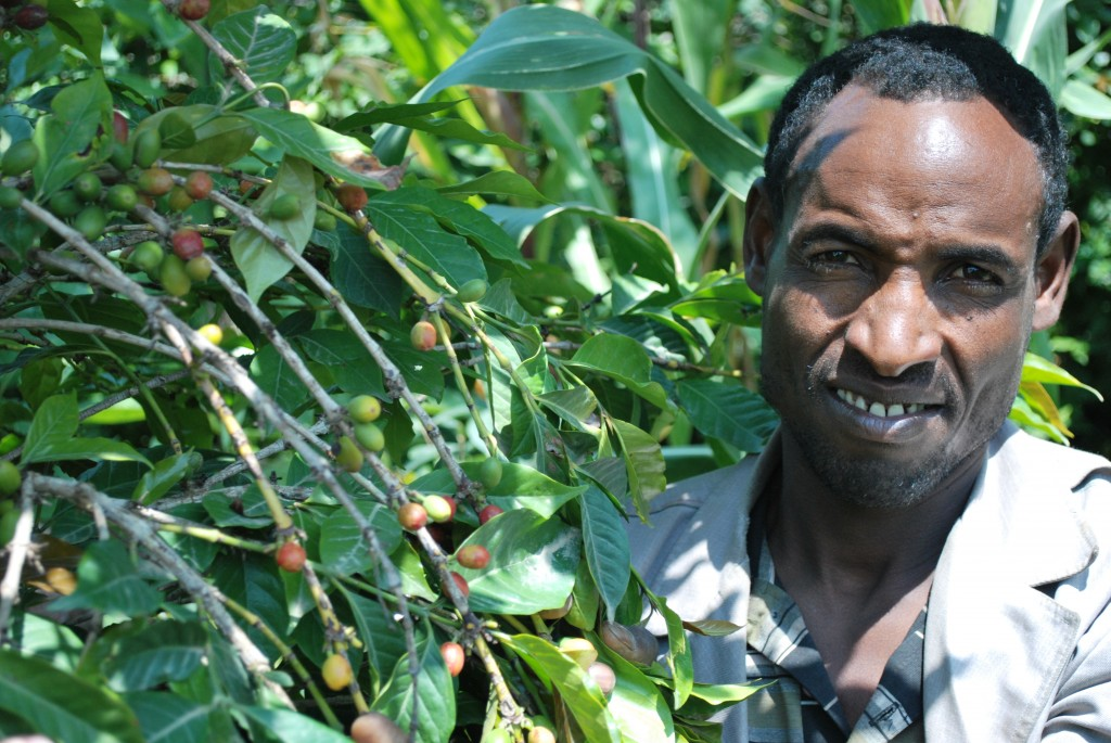 Harar-Coffee-Farmer