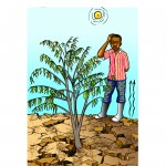 lyf-farmer extension-africa famers
